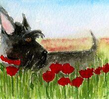 Scottie Dog 'Poppies' by archyscottie