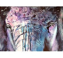 Precious Giant - Elephants Face Photographic Print
