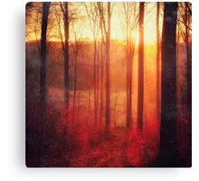 Scarlet Haze Canvas Print