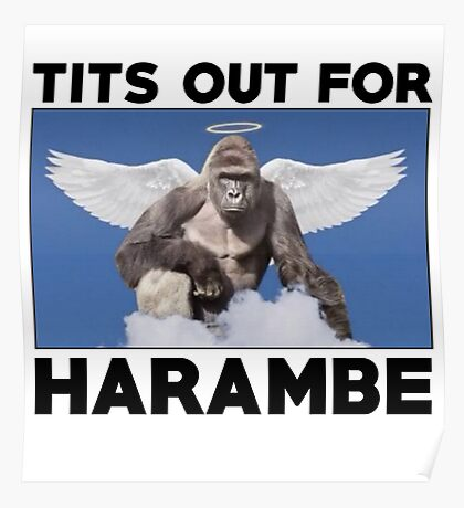 Tits out for HARAMBE   Poster