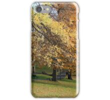 Autumn in Hobart iPhone Case/Skin