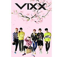 VIXX - Cherry Blossoms Photographic Print