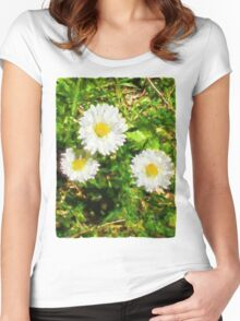 Three Daisies in the Sun Women's Fitted Scoop T-Shirt