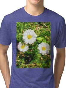 Three Daisies in the Sun Tri-blend T-Shirt