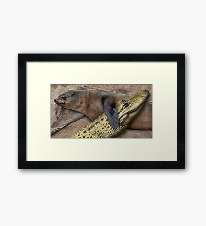 Seal and Gator Framed Print