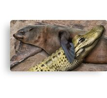 Seal and Gator Canvas Print