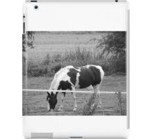 The monochrome horse  iPad Case/Skin