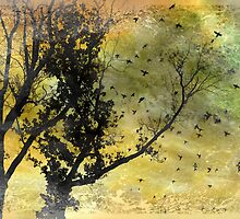 Fly to the Sun by Susan Werby