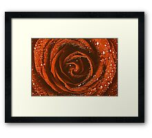 Red Rose Abstract With Water Drops Framed Print