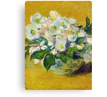 Claude Monet - Christmas Roses Canvas Print