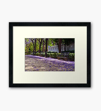 Magic Carpet Framed Print