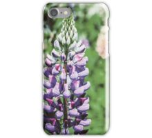Purple And Pink Snapdragon Flowers In Spring iPhone Case/Skin