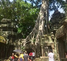 Cambodia - Ta Prohm Temple - Siem Reap - Angkor's Tree Village by Ren Provo