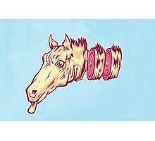 Ham Horse  Photographic Print