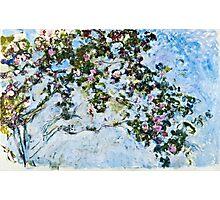 Claude Monet - Roses 1825  Photographic Print