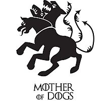 Mother of Dogs Photographic Print