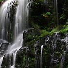 Nelson Falls in Tasmania by Imi Koetz