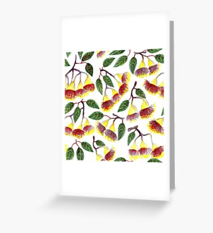 Blossoming eucalyptus. Greeting Card