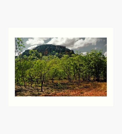 Kakadu Outcrop Art Print