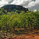 Kakadu Outcrop by V1mage