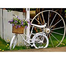 Blooming Bicycle Photographic Print