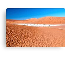 View of Deadvlei in early morning, Namibia Canvas Print
