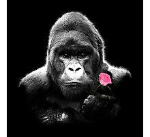 Gorilla Rose Photographic Print