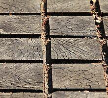 wooden walkway by mrivserg