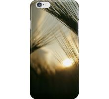 Barley Field iPhone Case/Skin