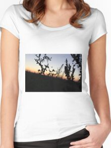 Sunset On The Horicon Marsh Women's Fitted Scoop T-Shirt