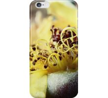 END OF SUMMER ROSE 055 iPhone Case/Skin