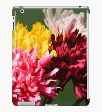 Colourful Flowers iPad Case/Skin
