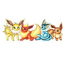 Pokemon Eeveelutions  Photographic Print