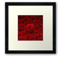 Rosey Love Framed Print