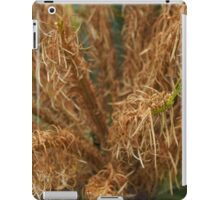 newly forming cycades plant in my front yard iPad Case/Skin