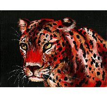 Red Leopard Photographic Print
