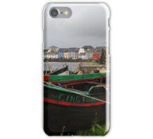 The Kingfisher iPhone Case/Skin