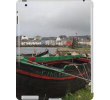 The Kingfisher iPad Case/Skin