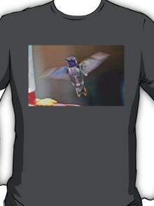 MALE COSTA'S IN FLIGHT TO FEEDER T-Shirt