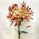 Portrait of a Mum in Red and Gold by LouiseK