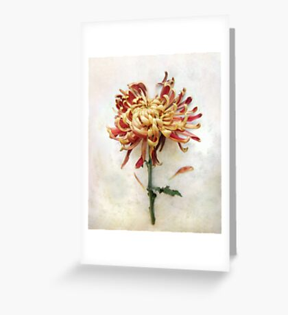 Portrait of a Mum in Red and Gold Greeting Card