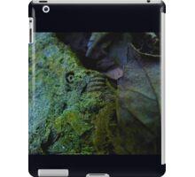 Forgotten World iPad Case/Skin