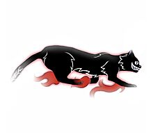 Black Shadow Cat Photographic Print