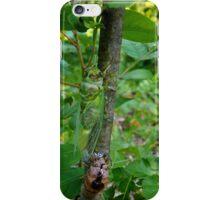 Shedding iPhone Case/Skin