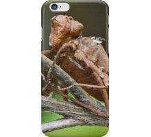 Dragonfly Husk iPhone Case/Skin