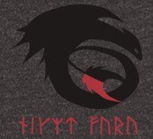 dragon training symbol with night fury written in runes. by Jasper Goldney
