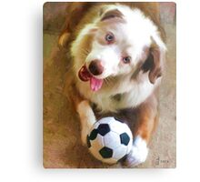 """Soccer Anyone?"" Metal Print"