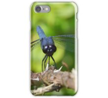 Slaty Skimmer iPhone Case/Skin