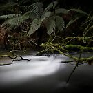 Junee River, Tasmania by CezB