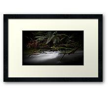 Junee River, Tasmania Framed Print
